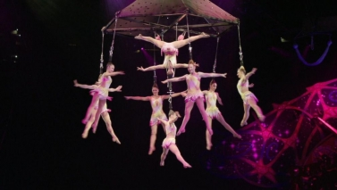 Circus Acrobats Reach $52.5 Million Settlement in 2014 Fall